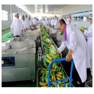 玉米真空包装机 糯玉米半自动真空包装设备
