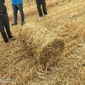 小麦秸秆回收打捆机 麦子秸秆打捆机价格