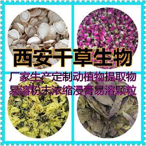 紫蘇提取物紫蘇濃縮粉紫蘇浸膏顆粒廠家生產