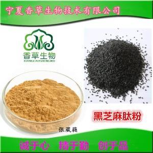 黑芝麻肽85% 小分子肽800-1000道尔顿 黑芝麻生物活性肽 药食同源