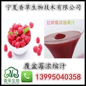 覆盆莓浓缩汁 冻干汁液 红树莓提取液 西北厂家 覆盆子粉