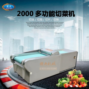 大型多功能切菜機