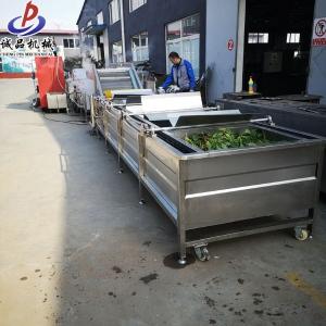 水果蔬菜气泡清洗机 省时省力