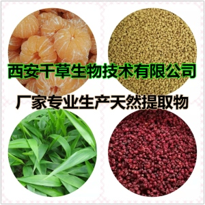 紫蘇水溶粉 廠家生產紫蘇提取物紫蘇濃縮流浸膏