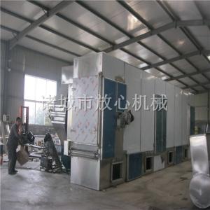 新疆大枣清洗烘干生产线 304材质