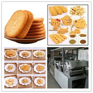 餅干全自動生產設備新型面粉機械自動化工廠
