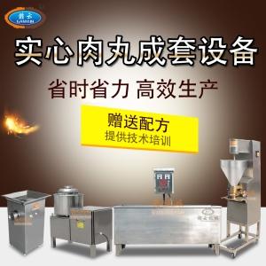 小型實心肉丸魚丸加工機器做新鮮魚丸肉丸的機器