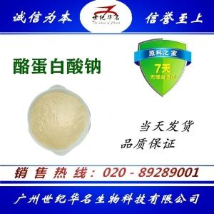 酪蛋白酸钠食品级增稠剂 生产厂家