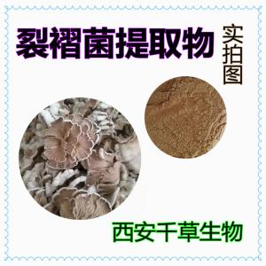 裂褶菌提取物粉 厂家生产裂褶菌提取物裂褶菌浓缩流浸膏