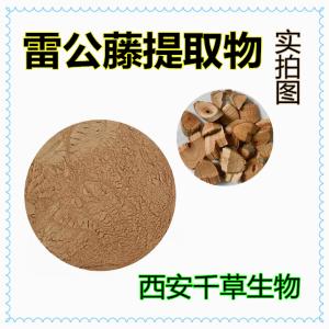 雷公藤提取物 生产各类水溶性提取物 供应雷公藤浓缩浸膏
