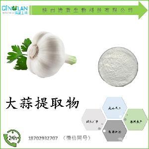 大蒜提取物10:1 多种比例 大蒜浓缩粉 价格