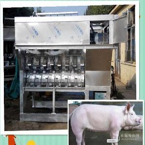猪屠宰生产流水线 全自动设备 诸城众友机械可按要求定做