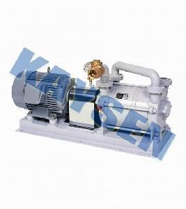 进口水环式真空泵(总代理)