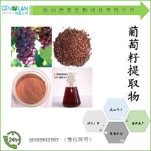 葡萄籽提取物10:1 葡萄籽浓缩粉 价格