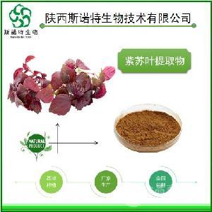 紫苏提取物  紫苏叶浸膏粉  紫苏叶提取物   厂家供货