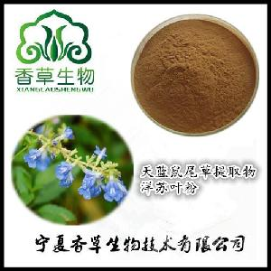 洋苏叶粉130目  天蓝鼠尾草浓缩液生产商 天蓝鼠尾草提取物产地