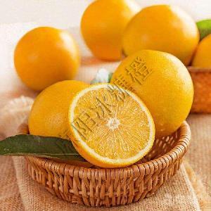 麻陽冰糖橙中小電商微商10斤一件無壞果代發