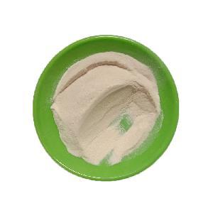 含糖胃蛋白酶   食品級優質胃蛋白酶