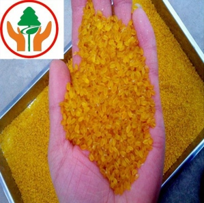 黄金营养米生产线厂家