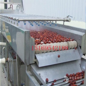 全自动叶菜气泡喷淋清洗机 蔬菜高压气泡冲浪清洗设备
