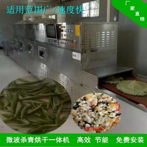 干燥装置 茶叶微波干燥杀青机械 专业定制
