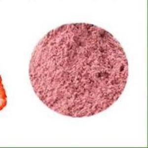水果粉速溶优质果粉草莓粉价格