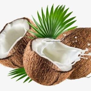 海南椰青厂家源头批发可口椰子价格