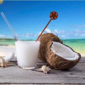 海南椰青现摘纯正品种椰子价格