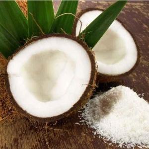海南三亚新鲜大椰子厂家供应价格