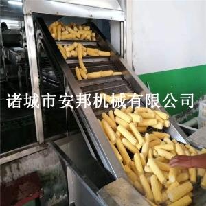 玉米專用蒸煮漂燙機廠家直銷