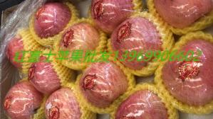 北京红富士苹果苗木新品种