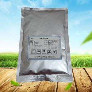 食品级焦亚硫酸钾厂家
