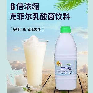 6倍浓缩克菲尔乳酸菌饮料