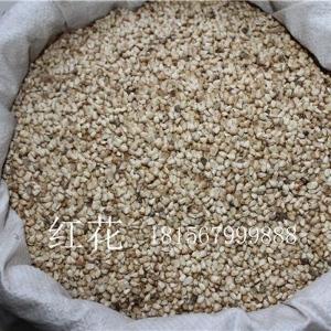 优质西红花种子价格 亳州红花基地 小红花籽批发