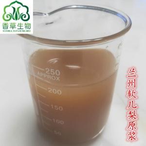兰州软儿梨浓缩汁厂家 香水梨浓缩汁 软儿梨青汁原浆