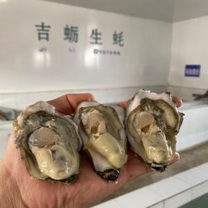 乳山鮮活牡蠣生蠔,網紅系列
