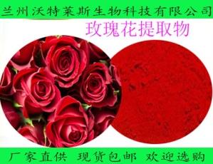 重瓣玫瑰花粉 10:1 喷雾干燥粉玫瑰花提取物