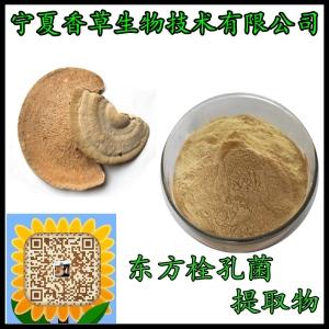 东方栓孔菌提取物 多糖 云南野生东方栓菌粉 80目 灰带栓菌速溶粉