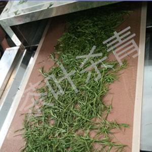 茶叶微波干燥设备