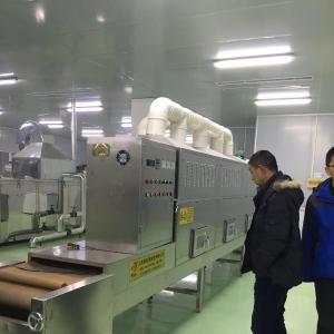 微波大豆脱腥灭酶设备