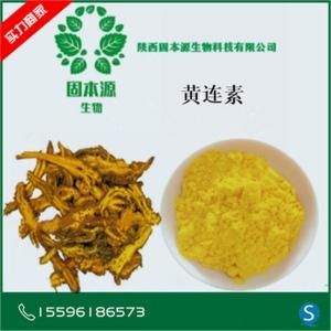 黄连素98% 盐酸小檗碱 小檗碱 黄连提取物黄连素 现货 包邮