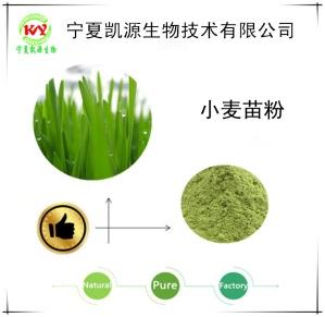 小麦苗粉  浸膏   小麦苗提取物   可定制生产  厂家包邮
