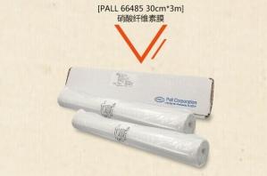 PALL BioTrace NT硝酸纤维素转印膜 货号66485