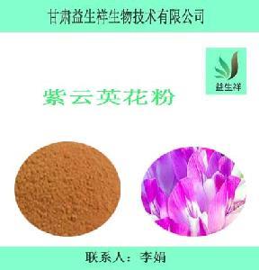 紫云英花粉      益生祥      量大从优