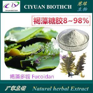 褐藻糖膠85% 海帶提取物 巖藻多糖Fucoidan 專業生產