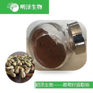 西安明泽生物大量现货 葡萄籽提取物 原花青素95%  无污染