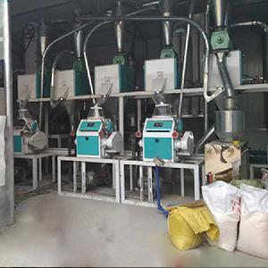 泰興成套玉米加工機械,玉米磨面設備全自動