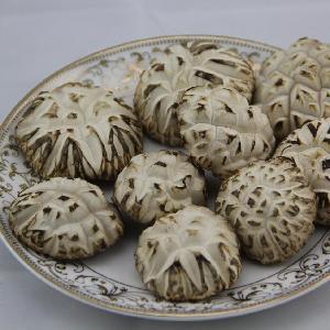 干制食用菌,干白花菇