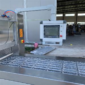 黃花魚拉伸膜包裝機 香腸真空包裝機