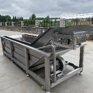 脆枣加工设备 油炸脆枣前处理清洗漂烫流水线
